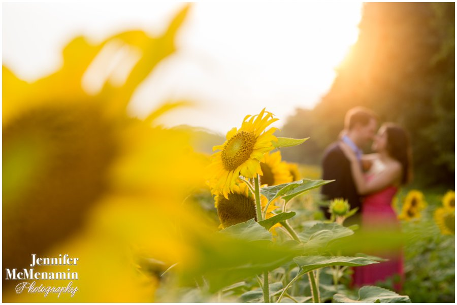 17-BlumWilliams_0433-0102_JenniferMcMenaminPhotography_sunflowers_engagement-photos_DC_Baltimore